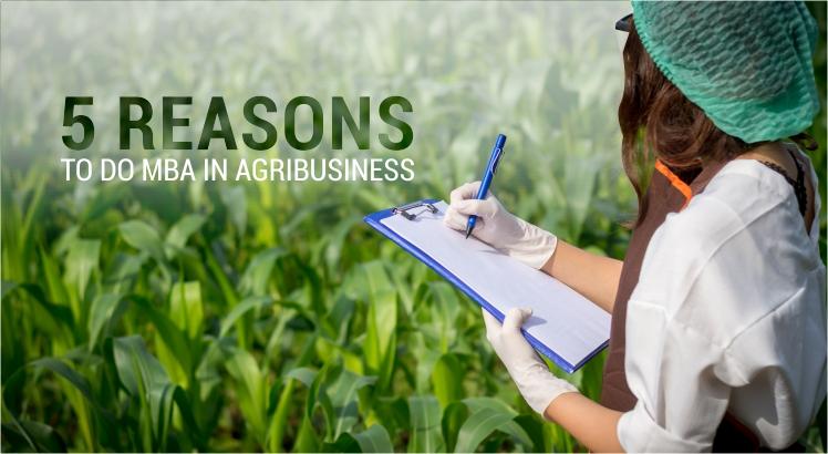5 Advantages of MBA Agribusiness management